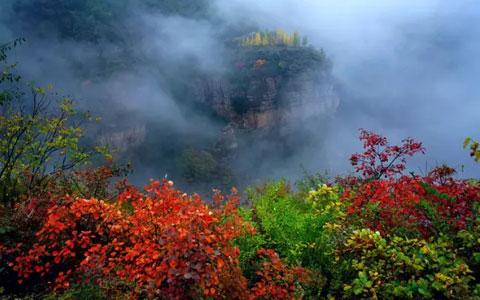 太行大峡谷秋叶